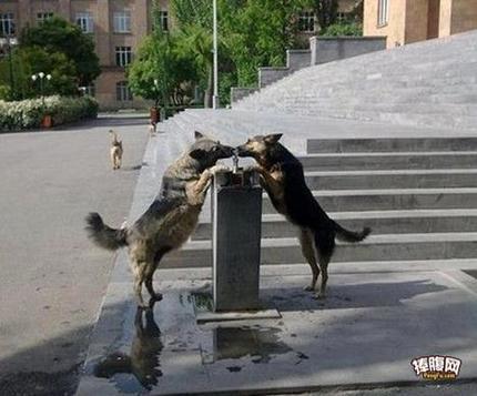不小心亲到了呢