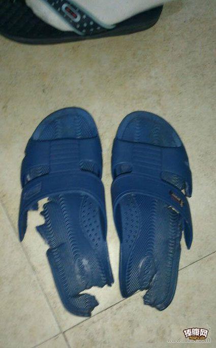 室友穷的,就这双凉鞋还算是完整
