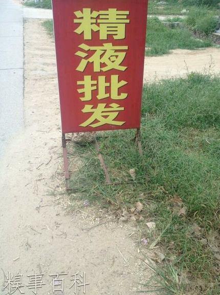 火钳刘明…求过百_搞笑_hao123上网导航